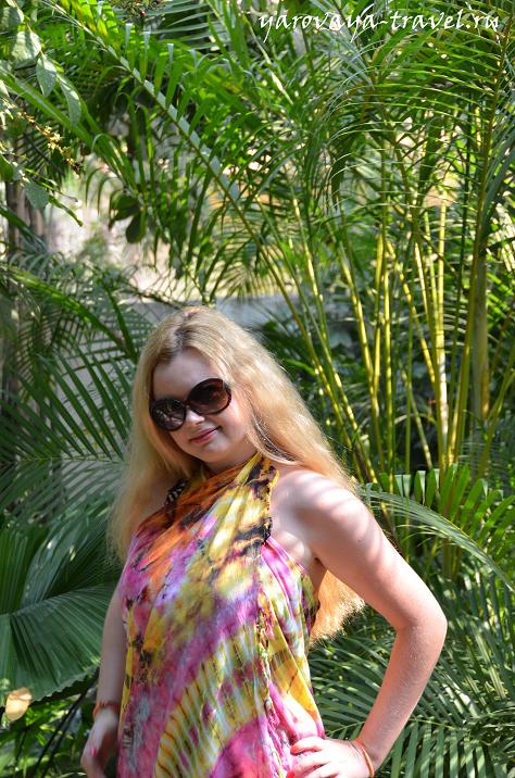 В тропическом саду