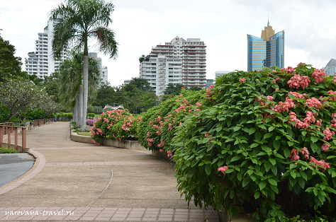 Городской парк в Бангкоке