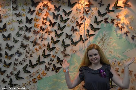 В парке бабочек в Куала-Лумпур