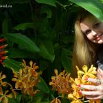 Парк орхидей в Куала-Лумпур, или цветочное разнообразие на одном гектаре.