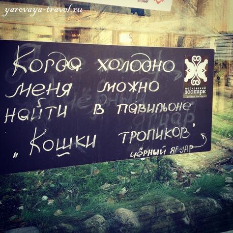 зоопарк часы работы москва