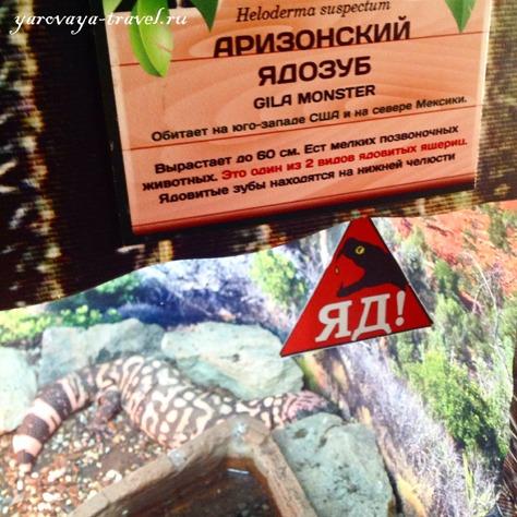 зоопарк в москве