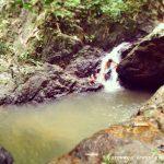 Питомник гиббонов и водопад Bangpae: достопримечательности Пхукета самостоятельно.