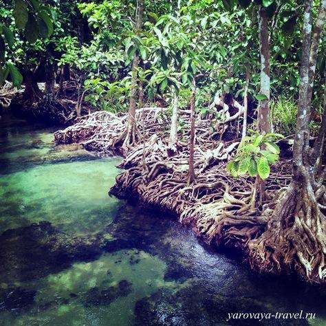 таиланд краби фото