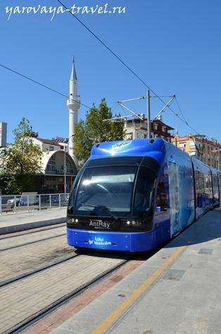 анталия общественный транспорт