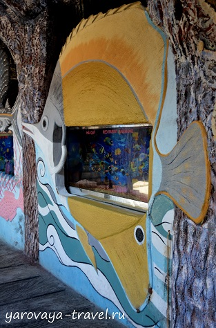 аквариум три нгуен