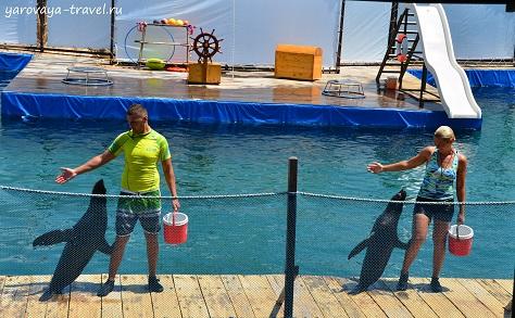 океанариум в нячанге добраться самостоятельно