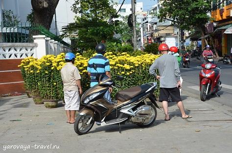 тет во вьетнаме в 2018 году