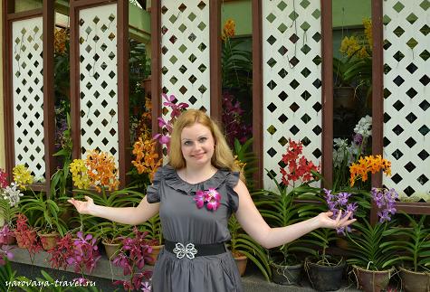 сад орхидей в Куала-Лумупур