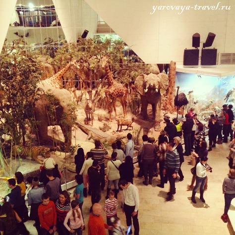 дарвиновский музей в москве отзывы