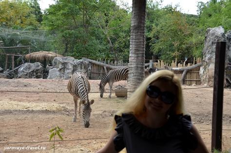 Зоопарк в Бангкоке.