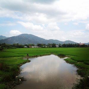 Красота по-вьетнамски)