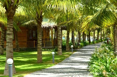 отель дессоле вьетнам нячанг