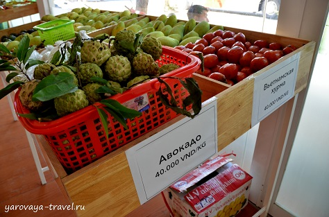 где купить в нячанге фрукты