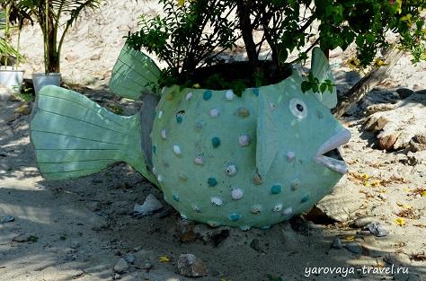 аквариум три нгуен в нячанге