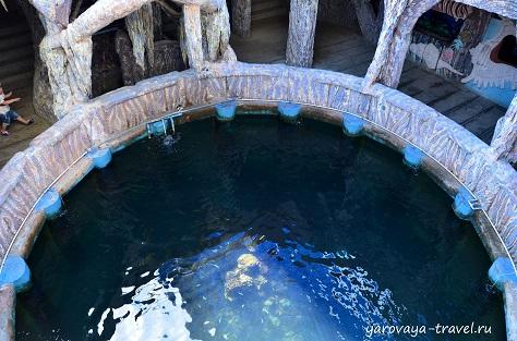 Вид сверху на открытый аквариум.
