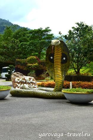 Есть и настоящие змеи, с которыми можно сфотографироваться при желании.