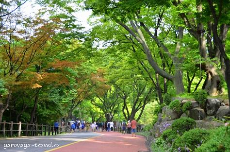 Дорожка с горы вниз, к парку.