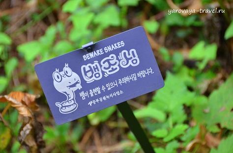 ботанический сад сеул