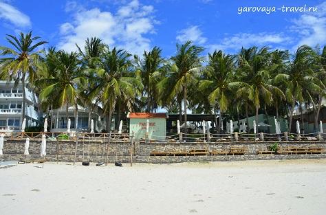 Парадайз Ресорт Доклет украшают пальмы.