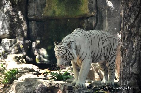 Зоопарк в Хошимине